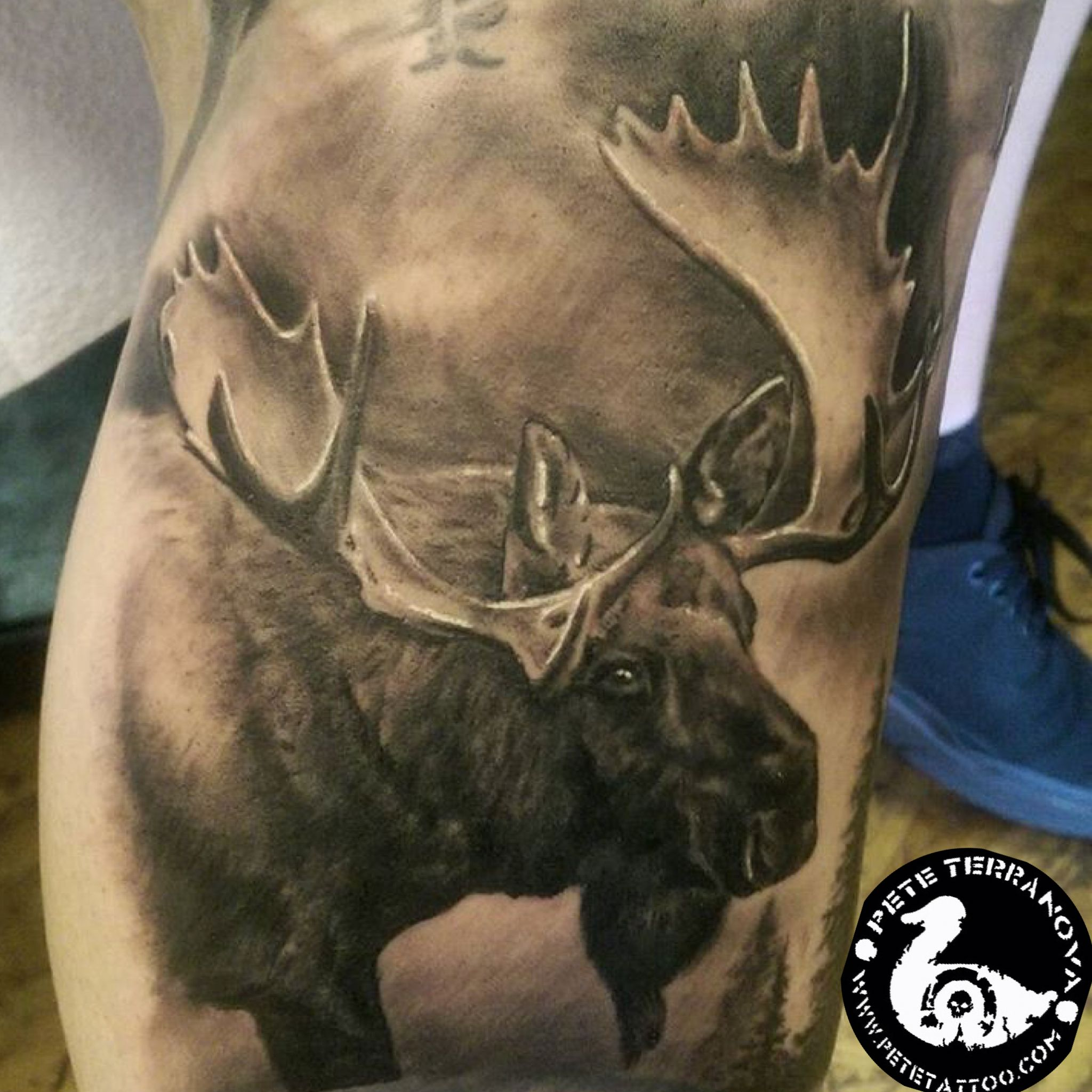 Black And Gray Moose Tattoo Custom Tattoos Moose Tattoo