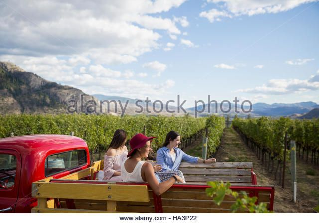 Women Riding In Truck Bed On Vineyard Tour Stock Image Truck