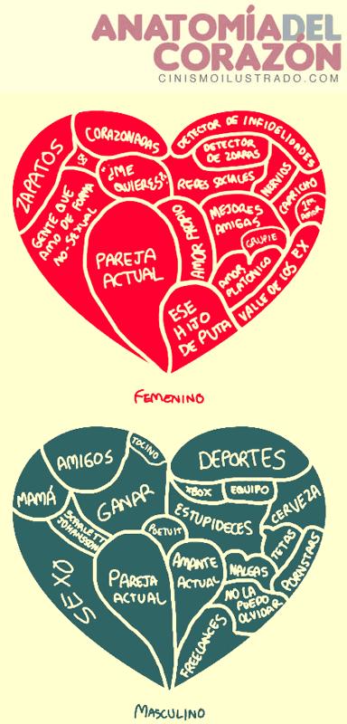 heart anatomy   HO\'OPONOPONO   Pinterest   Frases, Chistes y ...
