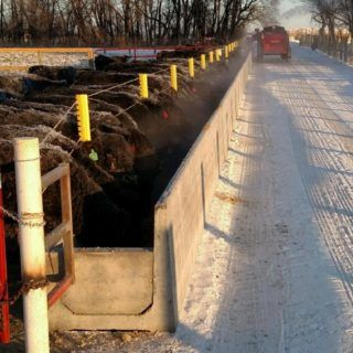 Concrete Feed Bunks - Cattle Feed Bunks   Hanson Silo Co