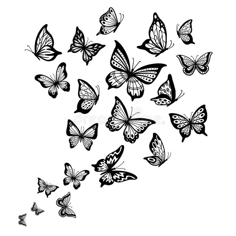 Butterfly Drawing Google Search Disenos De Mariposas Mariposas Para Tatuar Dibujos De Mariposas