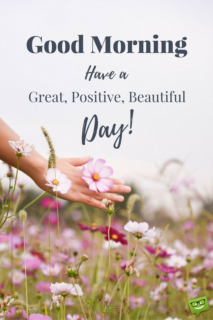 Wake Up And Seize The Day Pinterest Morning Images And Morning
