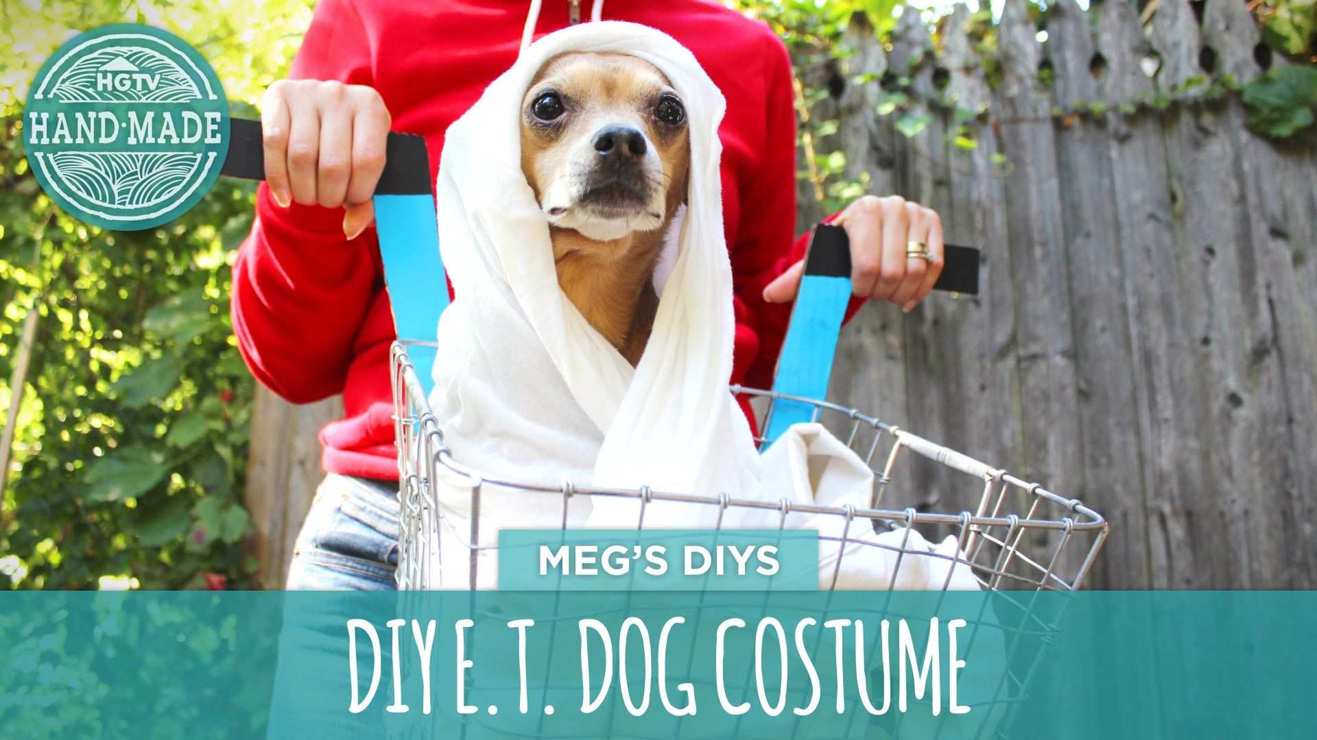 Diy et dog costume for a spooky good time pinterest costumes diy et dog costume solutioingenieria Choice Image