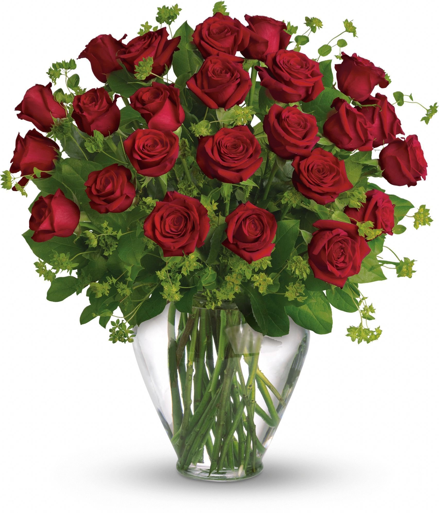 My Perfect Love Long Stemmed Red Roses Red rose