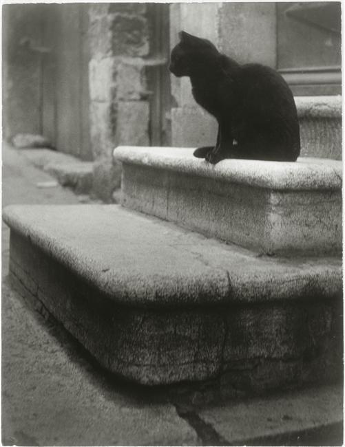 Le Chat Noir. 1945. Photographer: Brassaï