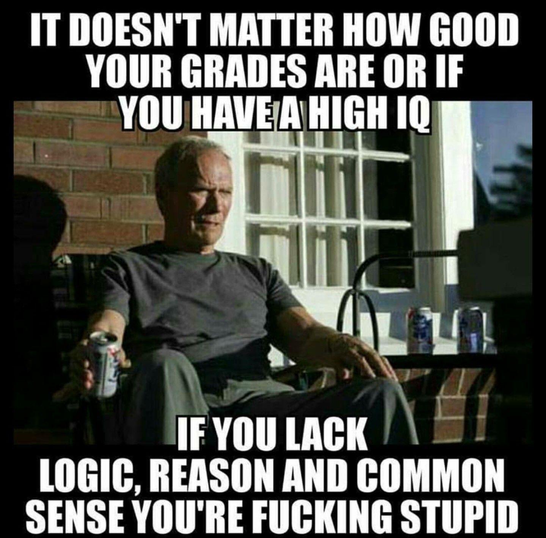 526e40eceeeda4d48e8ff2518bc33c8b if you lack common sense, you're just stupid , clint eastwood meme