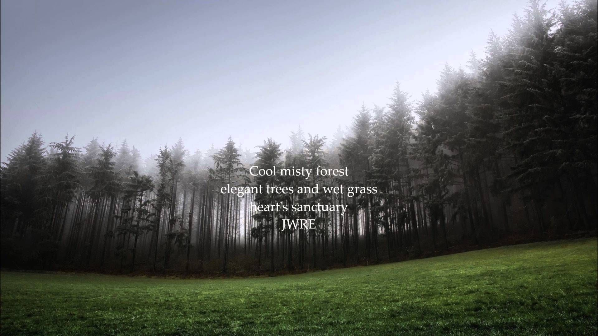Cool misty forest JWR Emmett, fantasy poetry Desktop