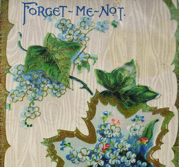 Antique Postcard  Forget Me Not Clearance Item by LoosLoft on Etsy, $2.00