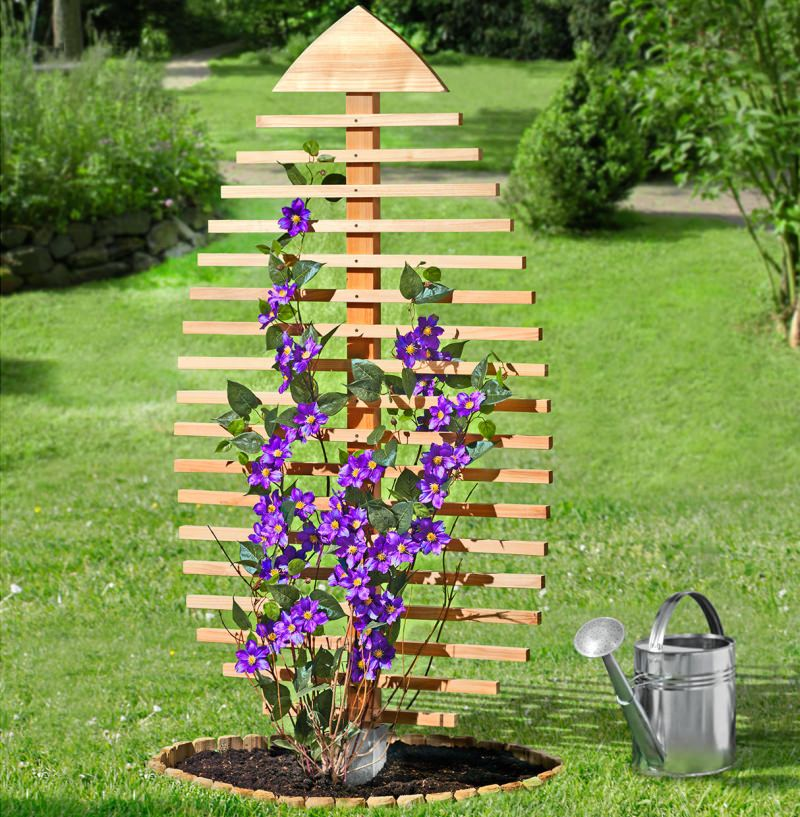 Pine Leaf-Shaped Trellis Bestows Garden with Summer-Ready Look