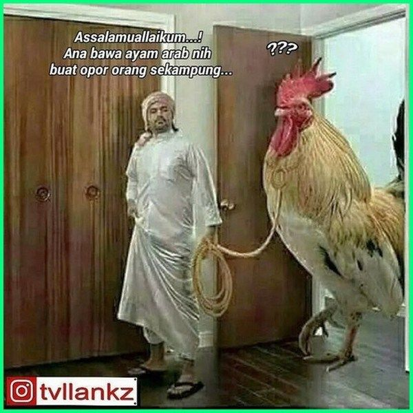 Meme Lucu Opor Ayam Meme Opor Ayam Foto Meme Ayam Meme Ayam Gokil