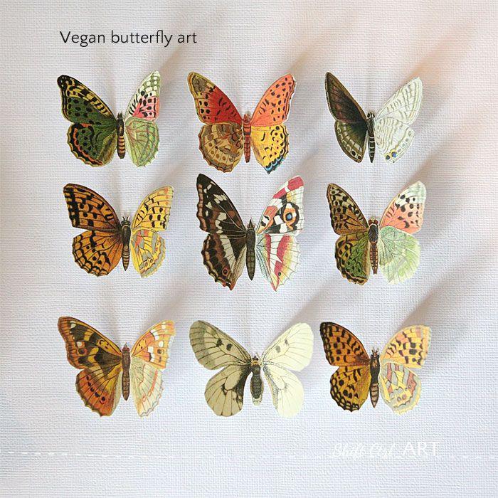 Vegan butterfly framed art - Mother\'s day DIY idea - including ...