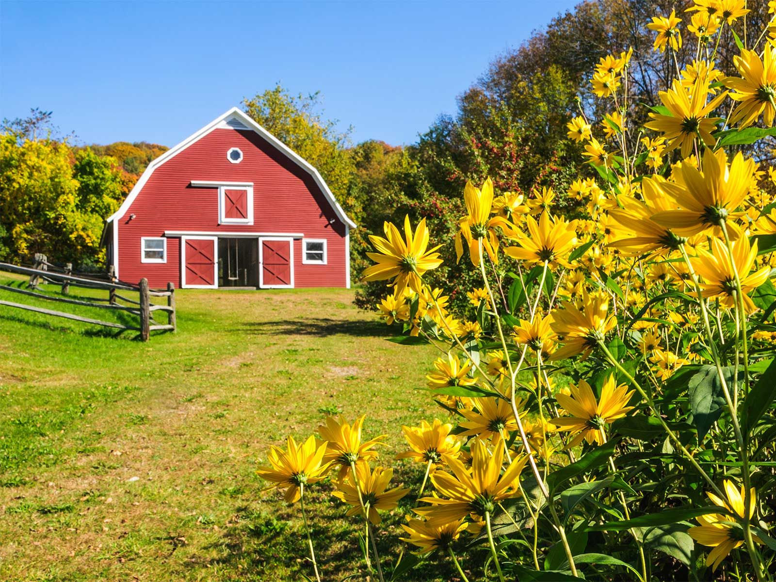 Vermont has so many different choices for barn weddings ...