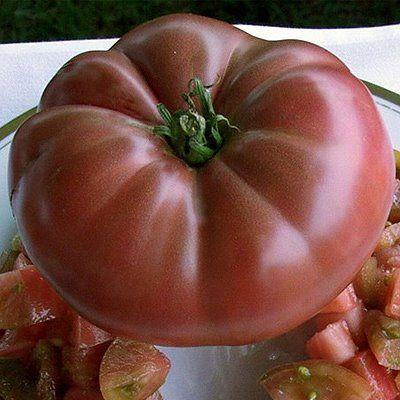 Tomato Cherokee Purple Organic Heirloom Tomato Seeds 400 x 300