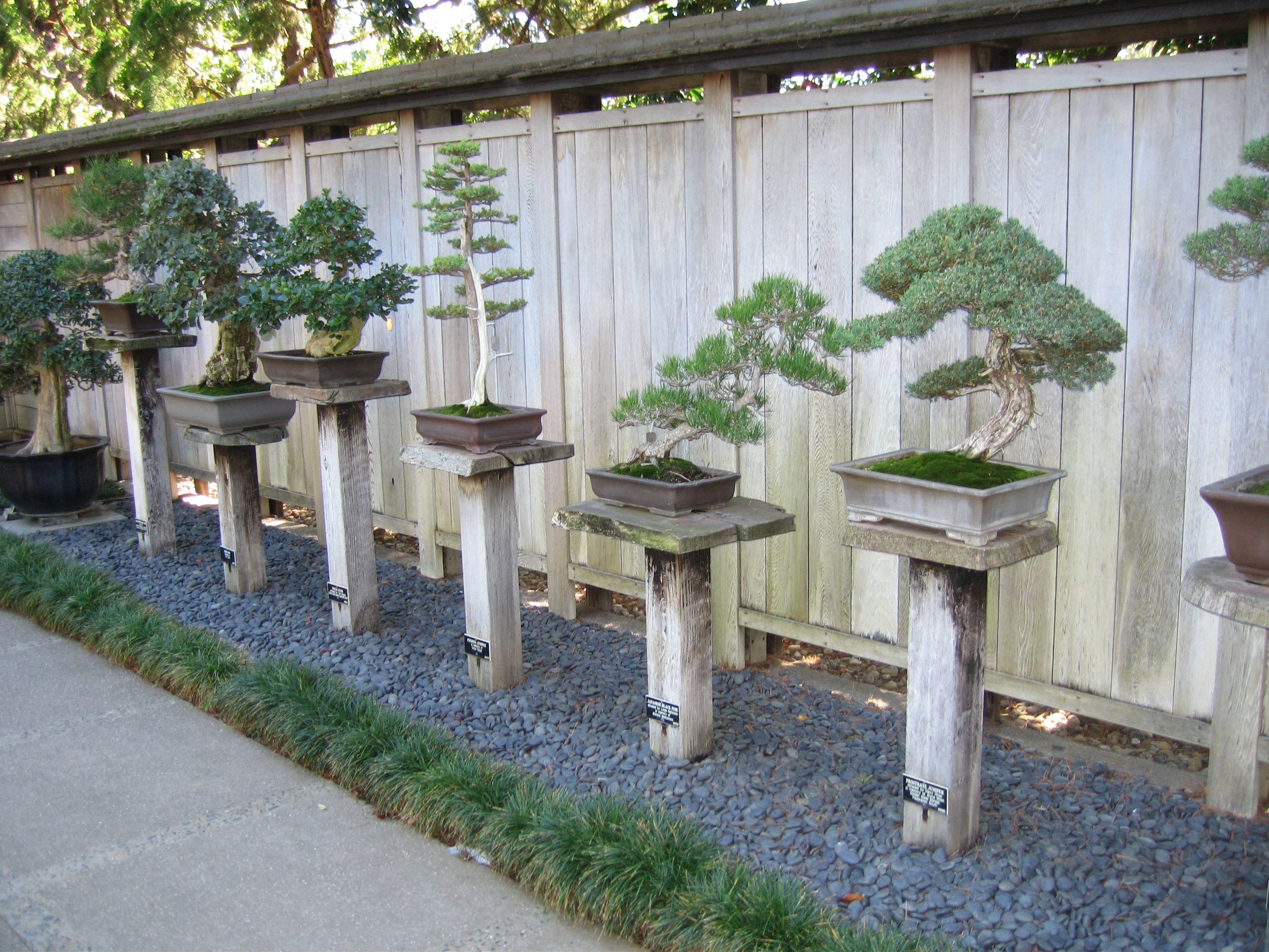 Botanical gardens oahu cing garden ftempo for Garden state orthopedics fair lawn