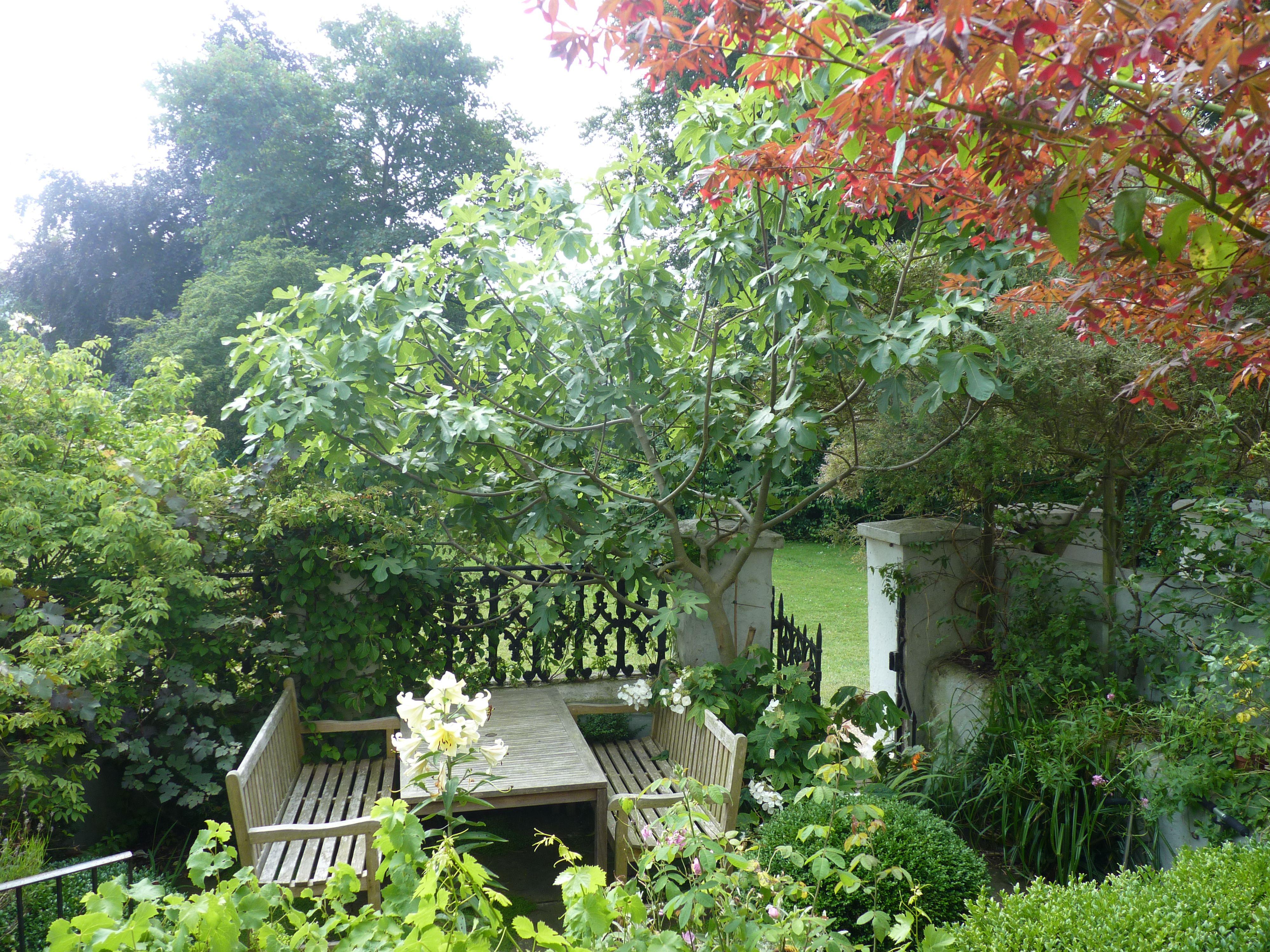 Heritage courtyard design | Courtyard design, Garden ...