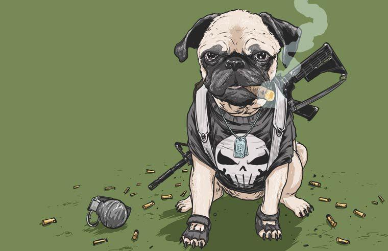Marvel Dogs Quand Un Illustrateur Transforme Les Super Héros En