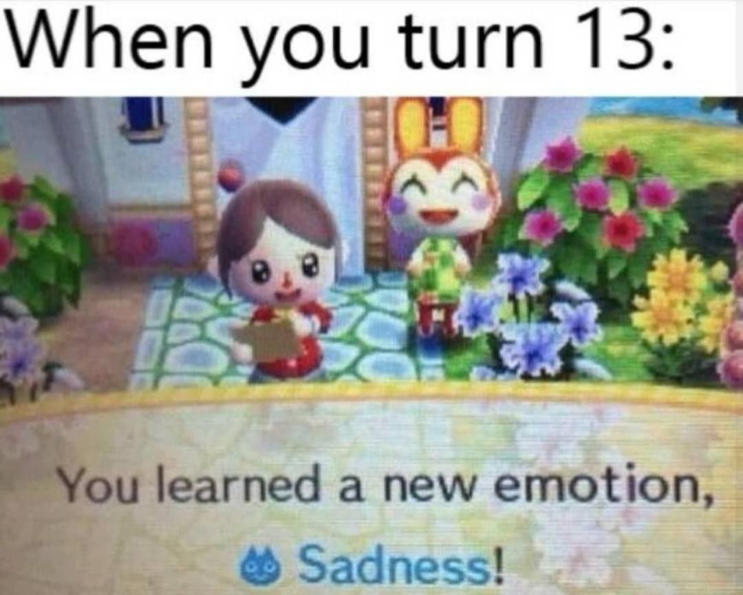 Pin By Not Today Sweetie On Funny Stuffs Animal Crossing Memes