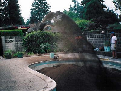 Ways To Fill In Pool Swimming The Owner Decided Backyard