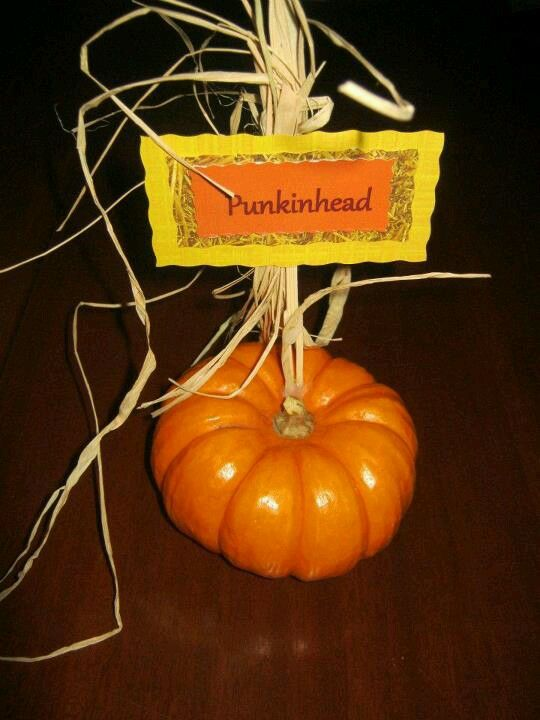 I used mini pumpkins as table setting name tags at my poppop ...