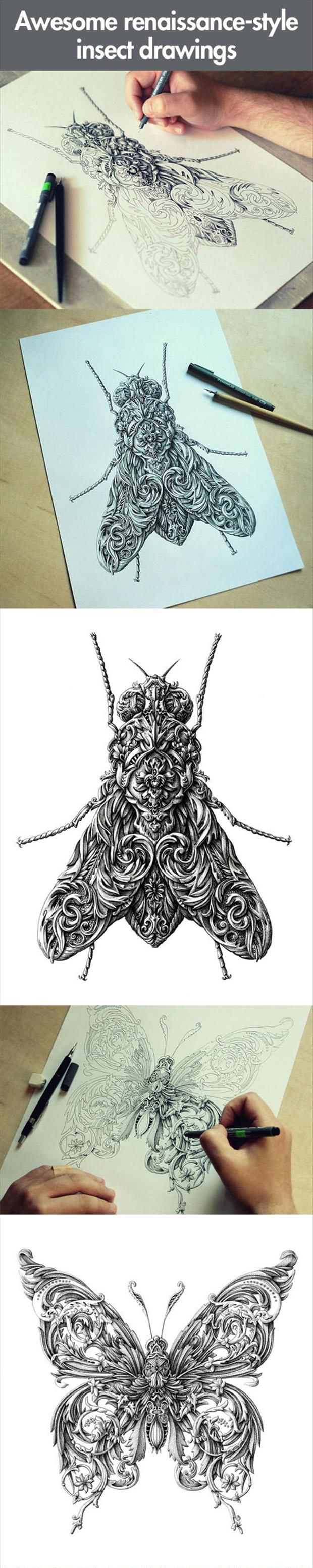 Insect drawing art pinterest insects doodles and art techniques