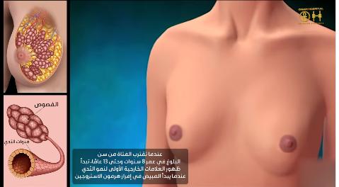 المراحل الأربعة لنمو ثدي المرأة الست جسمها يتغير فى مراحل عمرها المختلفة ونمو الثدي يعتبر جزء حيوي فى تغير شكل الجسم بالكامل يبدأ الثدي فى التغير أولا ق Videos