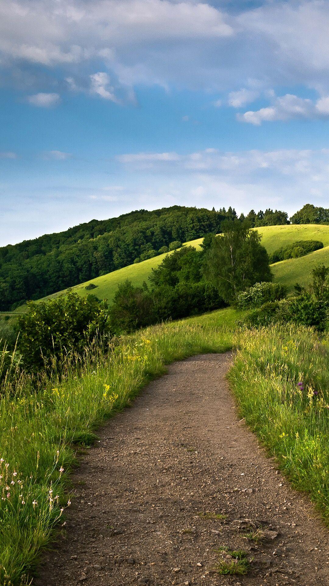 Trail in the hillside