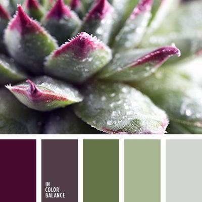 Купальники салатового цвета