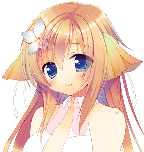 Cute Anime Cat Girl Wish I Could Draw This Good Anime Cat Hd