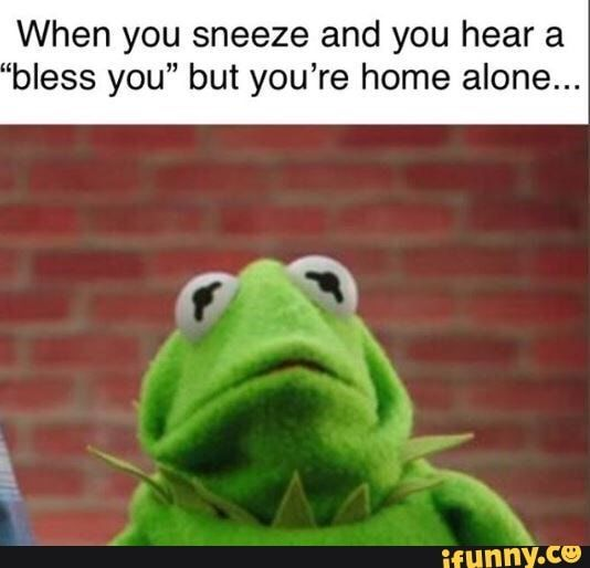 Picture memes r5GNW6i17 — iFunny