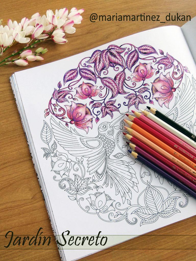 Jardin Secreto Johanna Basford Dibujos Para Colorear Adultos