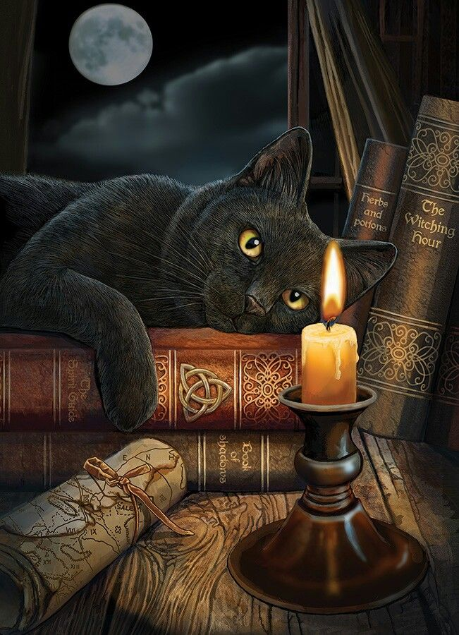 Diamond Fireworks Black Cats