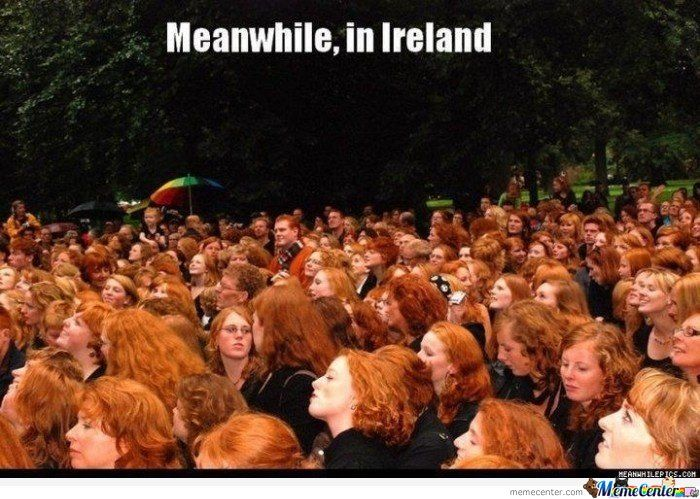 a croud of headheads gather in ireland facts and information