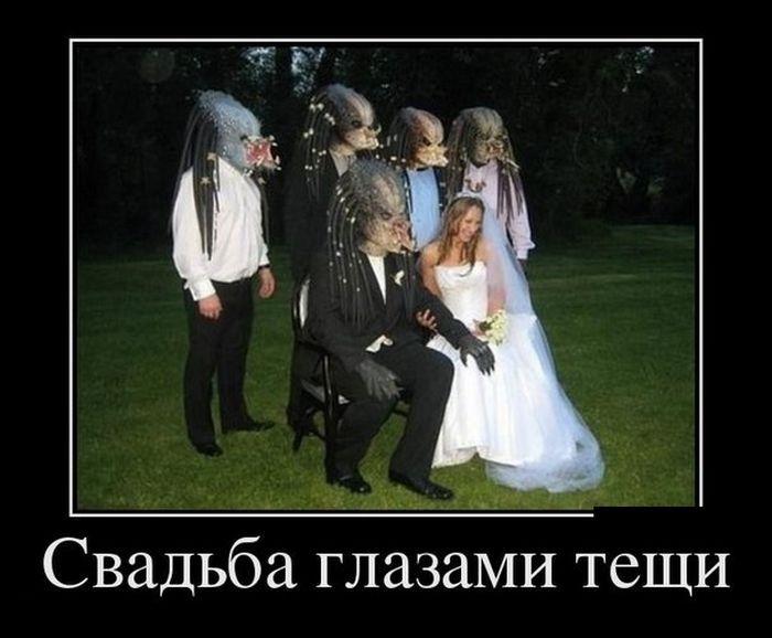 Картинки класс, картинки про свадьбу с надписями смешные до слез