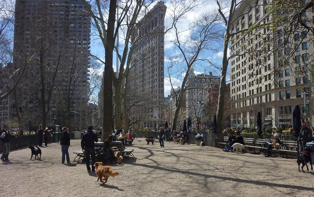 Finding The Great Outdoors in The Big Apple    By Christi McDonald