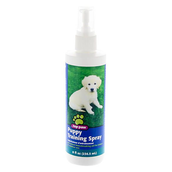 Top Paw Puppy Training Spray Dog Potty Training Petsmart