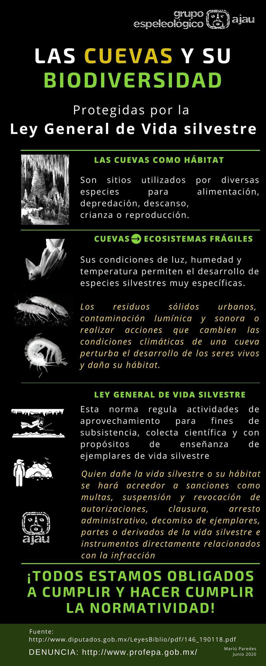 Las 7 mejores grutas para visitar en la Península de Yucatán 2
