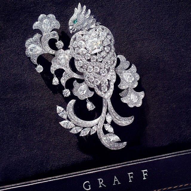graffdiamondsNew from the Workshop - a sublime Diamond Parrot Brooch. At its centre, an exquisite 5.15ct cushion cut diamond. #graffdiamonds #beauty #diamonds