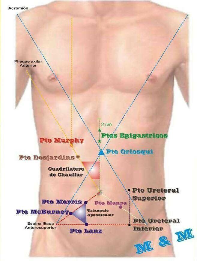 Puntos dolorosos abdomen | Medicina | Pinterest | Abdomen, Puntos y ...