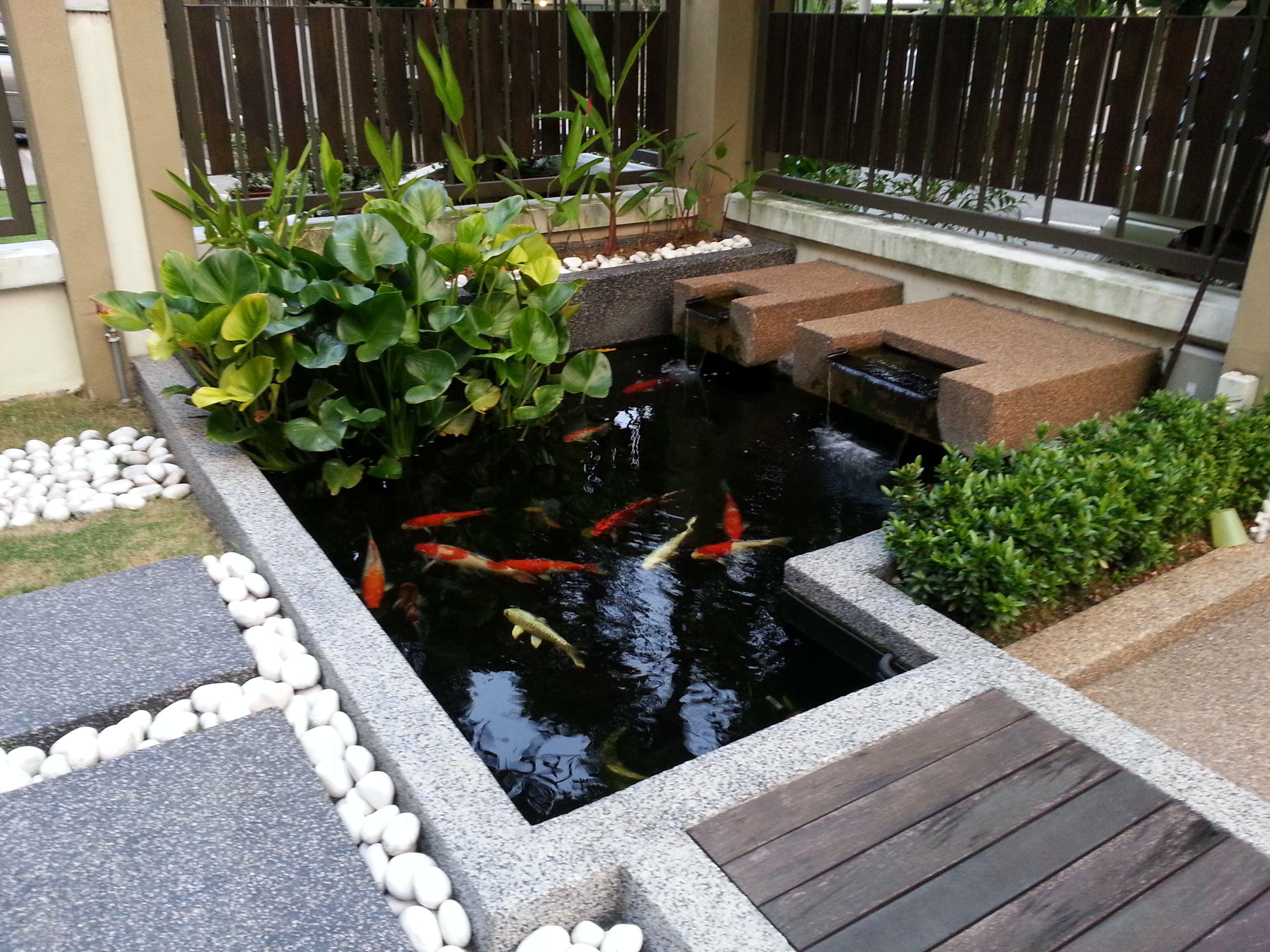 Koi Pond Koi Pond Ponds Backyard Pond Design Modern backyard koi pond