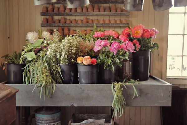 lovely flowers fresh from the garden