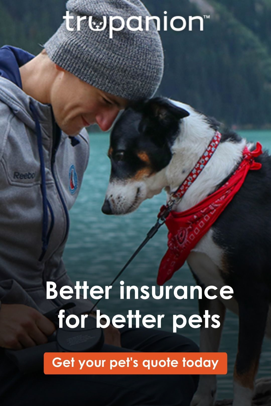 Better Insurance For Better Pets In 2020 Pets Animal Quotes Your Pet