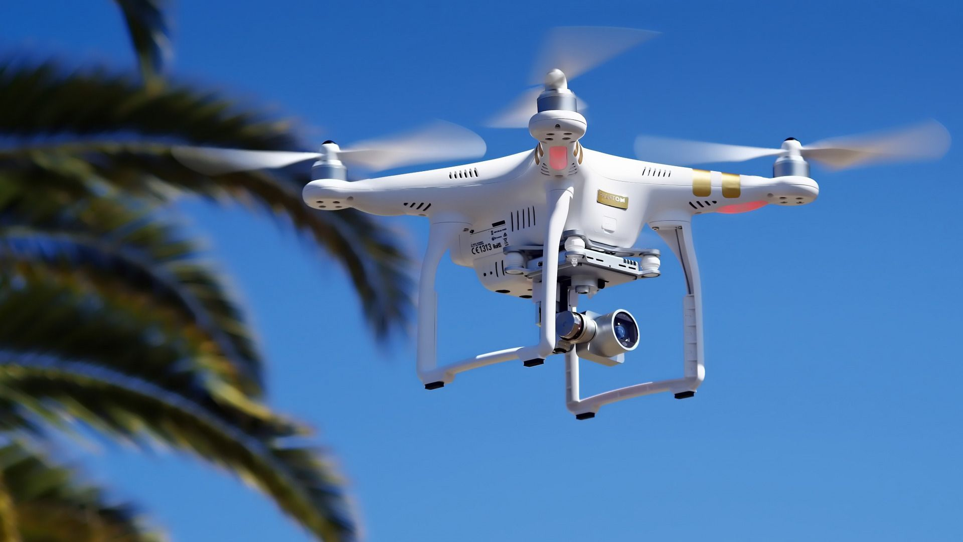Download Wallpaper White DJI Phantom 3 Drone High Tech Palm Tree