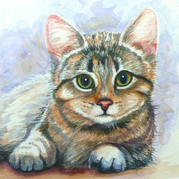 Watercolour Kitten Print By Gill Bustamante Watercolor Cat Cat