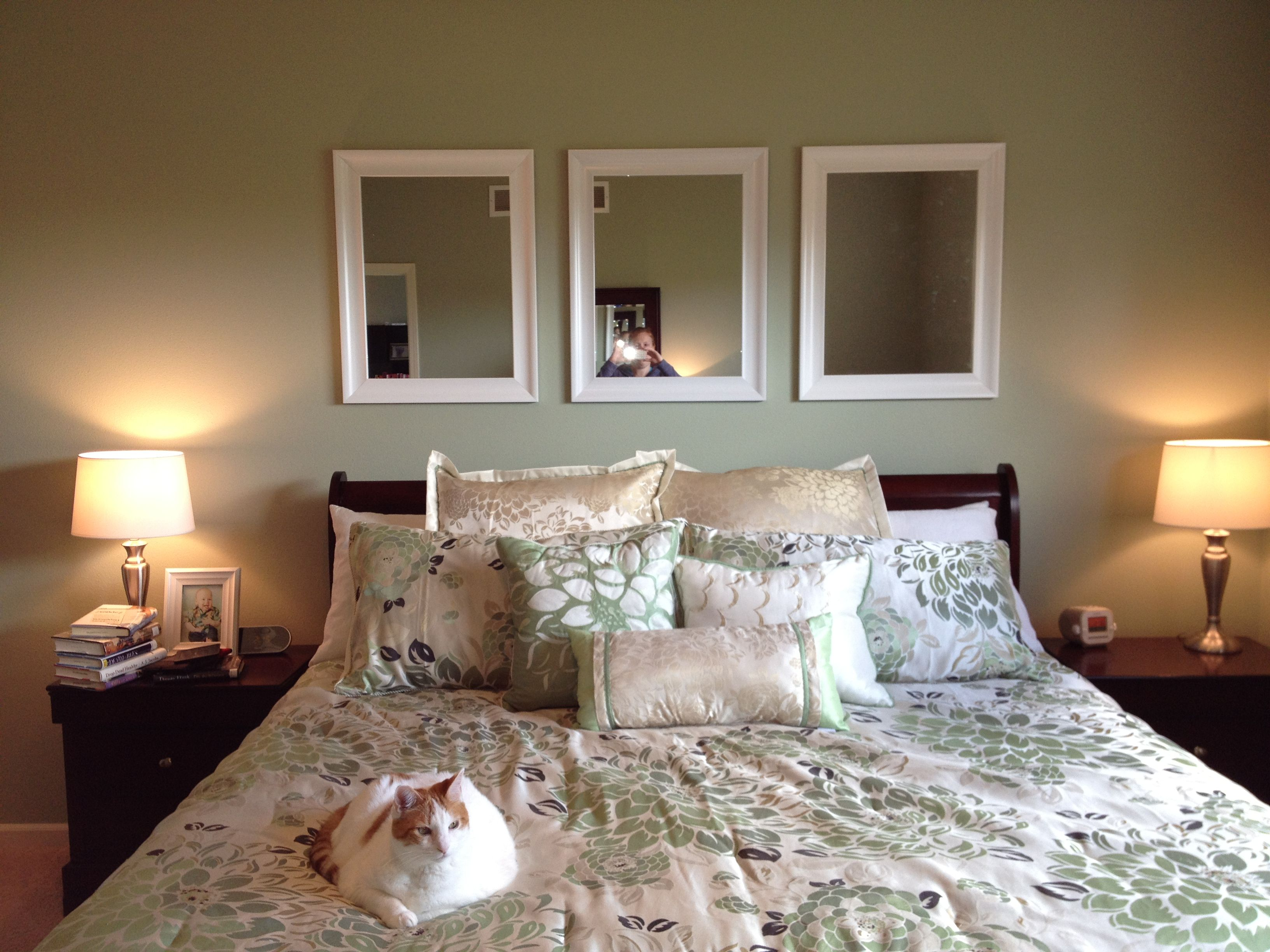 Sherwin Williams Softened Green SW 6177 Green is a ridiculously