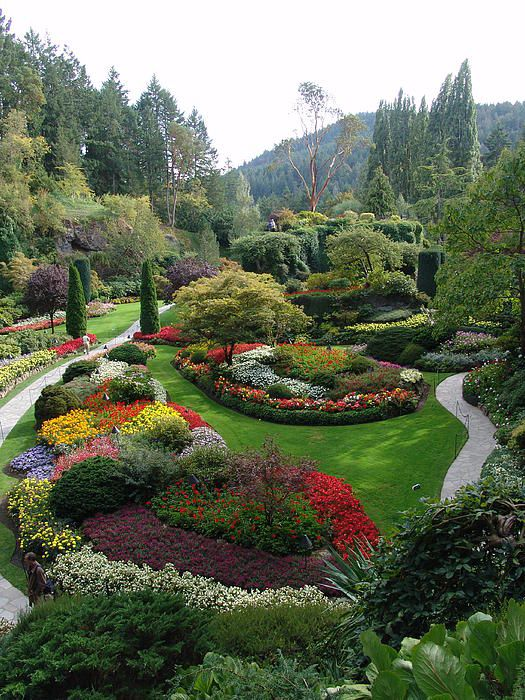 52813789014cb48ef30aaa0a3fb57303 - How Long Does Butchart Gardens Take