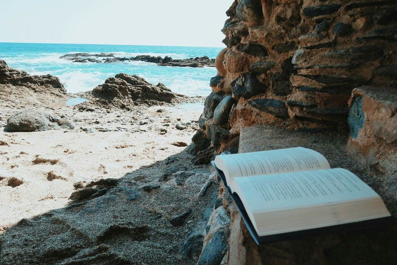 Beach season is coming. Book season never left.  (Source: http://bit.ly/1NrEi45.)