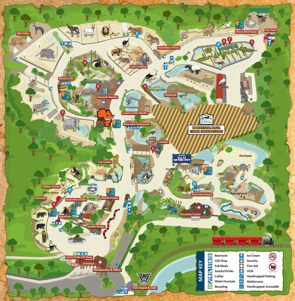 Map Of San Antonio Attractions Zoo Map Click On Map For A - Houston zoo map