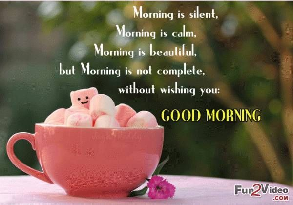 Good morning morning good morning morning quotes good morning quotes good morning morning good morning morning quotes good morning quotes good morning greetings m4hsunfo