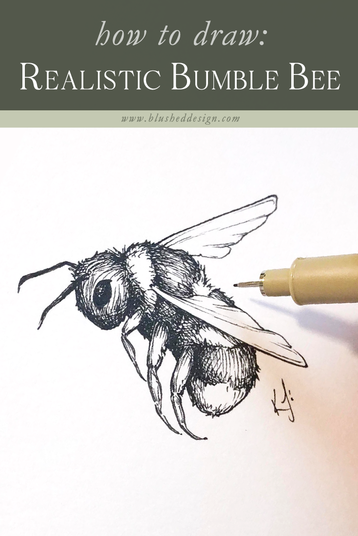 Bumblebee Sketch : bumblebee, sketch, Realistic, Bumble, Drawing,, Painting,, Sketch