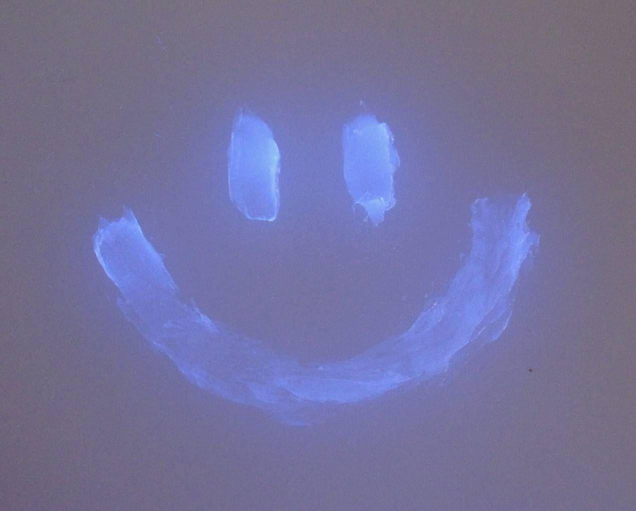 16 Things That Glow Under Black Or Ultraviolet Light Diy Black Light Uv Black Light Black Light